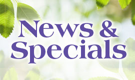 NewsSpecials
